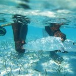 Caribbean Fishing Trip: An Ideal Escape From the Daily Grind