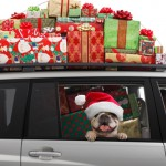 AAA: Holiday Season to Feature More Travelers on the Road