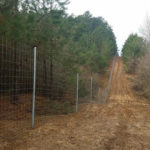 All About Deer Fencing With Straight Shooter Game Fencing